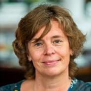 Inge van Adrichem